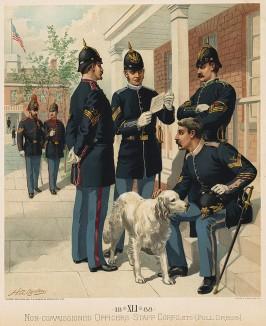 Американские унтер-офицеры в парадной форме образца 1888 года (лист 41 одной из самых красивых серий хромолитографий конца XIX века, посвящённых военной форме. Издано в Нью-Йорке силами генерал-квартирмейстера армии США)