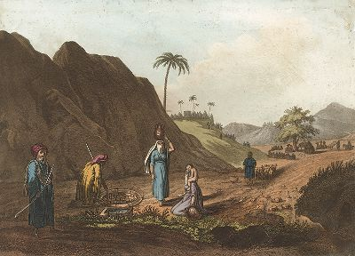 """Зета, неподалеку от Яффы. Лист из серии """"Picturesque Scenery of the Holy Land & Syria"""", Лондон, 1803"""