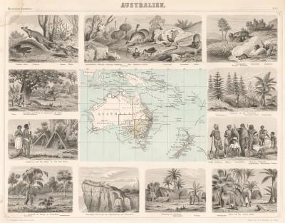 Карта Австралии и близлежащих островов, а также 11 картушей, гравированных на стали, с изображениями жителей, животных и пейзажей континента (справа вверху тилацин, или сумчатый волк). Illustriter Handatlas F.A.Brockhaus. л.7. Лейпциг, 1863