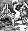 Орёл, символ Иоанна Богослова (Евангелиста). Ганс Бальдунг Грин. Иллюстрация к Hortulus Animae. Издал Martin Flach. Страсбург, 1512