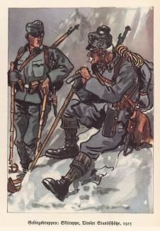 Армия Австро-Венгрии в 1915 году. Тирольские горные стрелки (из популярной в нацистской Германии работы Мартина Лезиуса Das Ehrenkleid des Soldaten... Берлин. 1936 год)