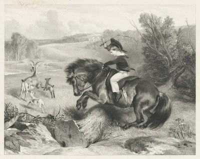 Юный лорд Александр Джордж Рассел (1821-1907), будущий генерал Британской армии, на своём пони по кличке Эмеральд. Литография с оригинала Эдвина Ландсира. Лондон, 1832