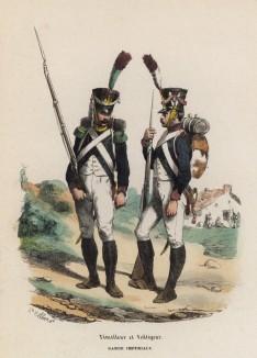 Солдаты гвардейской лёгкой пехоты Великой армии (тиральер и вольтижёр) (из популярной работы Histoire de l'empereur Napoléon (фр.), изданной в Париже в 1840 году с иллюстрациями Ораса Верне и Ипполита Белланжа)