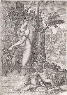 Венера в розовом кусте. Гравюра Джорджио Гизи по оригиналу Луки Пенни, 1582 год.