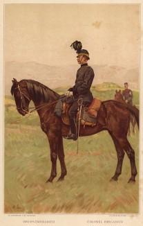Бригадный генерал швейцарской армии (из альбома хромолитографий L' Armée Suisse... Цюрих. 1894 год)