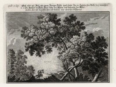 Неопалимая купина (из Biblisches Engel- und Kunstwerk -- шедевра германского барокко. Гравировал неподражаемый Иоганн Ульрих Краусс в Аугсбурге в 1700 году)