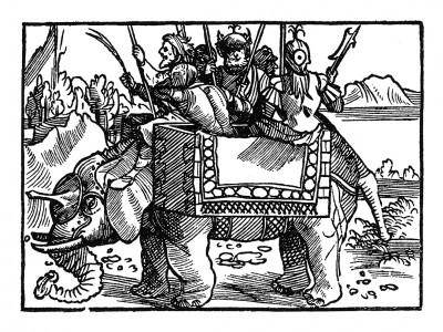 Боевой слон. Иллюстрация Йорга Бреу Старшего к описанию путешествия на восток Лодовико ди Вартема: Ludovico Vartoman / Die Ritterliche Reise. Издал Johann Miller, Аугсбург, 1515