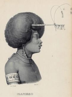 Портрет полинезийца с модной заколкой для волос (лист 11 второго тома работы профессора Шинца Naturgeschichte und Abbildungen der Menschen und Säugethiere..., вышедшей в Цюрихе в 1840 году)