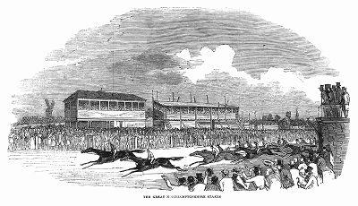 Стремительно несущиеся к финишу лошади на скачках, весьма популярных в Великобритании в графстве Нортгемптоншир (The Illustrated London News №100 от 30/03/1844 г.)