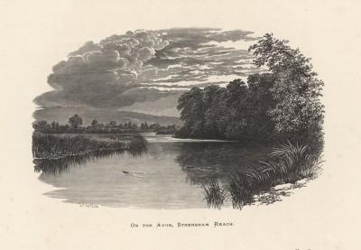 """Стреншэм Рич на реке Эйвон (иллюстрация к работе """"Пресноводные рыбы Британии"""", изданной в Лондоне в 1879 году)"""