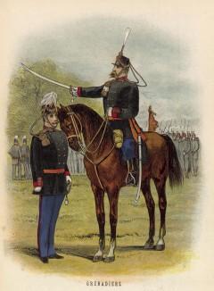 Голландские гренадеры на строевом смотре (иллюстрация к работе Onze krijgsmacht met bijshriften... (голл.), изданной в Гааге в 1886 году)