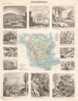 Карта Северной Америки с обозначением границ русской и американской частей материка, а также 11 картушей, гравированных на стали, с изображениями жителей, животных и пейзажей континента. Illustriter Handatlas F.A.Brockhaus. л.8. Лейпциг, 1863