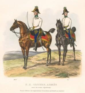 Штаб-офицер и батальонный адъютант венгерских гренадер австрийской армии (из K. K. Oesterreichische Armée nach der neuen Adjustirung in VI. abtheil. II te. Abtheil. Infanterie. Лист 5. Вена. 1837 год)