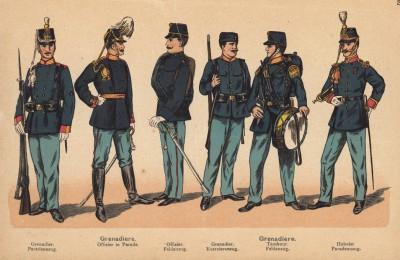 Голландские гренадеры: солдат и офицер в парадной форме, офицер в полевой форме, гренадер в форме для строевых занятий, барабанщик в полевой форме и гобоист в парадной форме