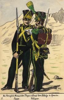 Егерь и вольтижер пехотного полка герцогства Нассау Великой армии Наполеона, принимавшего участие в Испанской кампании. Коллекция Роберта фон Арнольди. Германия, 1911-29