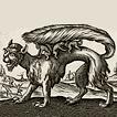 Монстры и чудовища