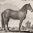 Том I. 1749 год
