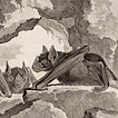 Рукокрылые графа де Бюффона