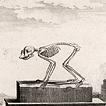 Том XIII. 1765 год