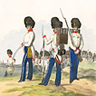 Oesterreichische Armée nach der neuen Adjustirung