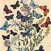 Книга бабочек Фридриха Берге