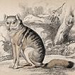 Вильям Жардин. Млекопитающие. Том IV. 1839 год