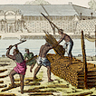 XVII век. Нидерланды