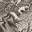 Stradanus, XVI век