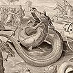 Драконы и змеи