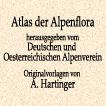 Антон Хартингер. Альпийская флора. Томa I–V. 1897 год